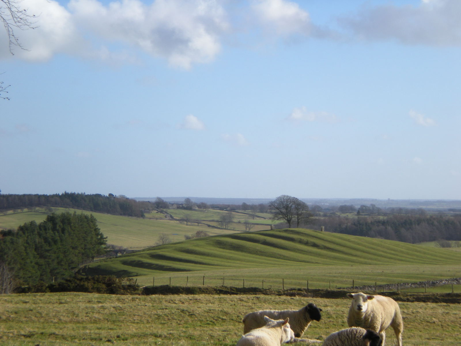 Nick Owen's photograph of the view to Tuthill from the Wallington riding, shows a landscape that is far from cut off.