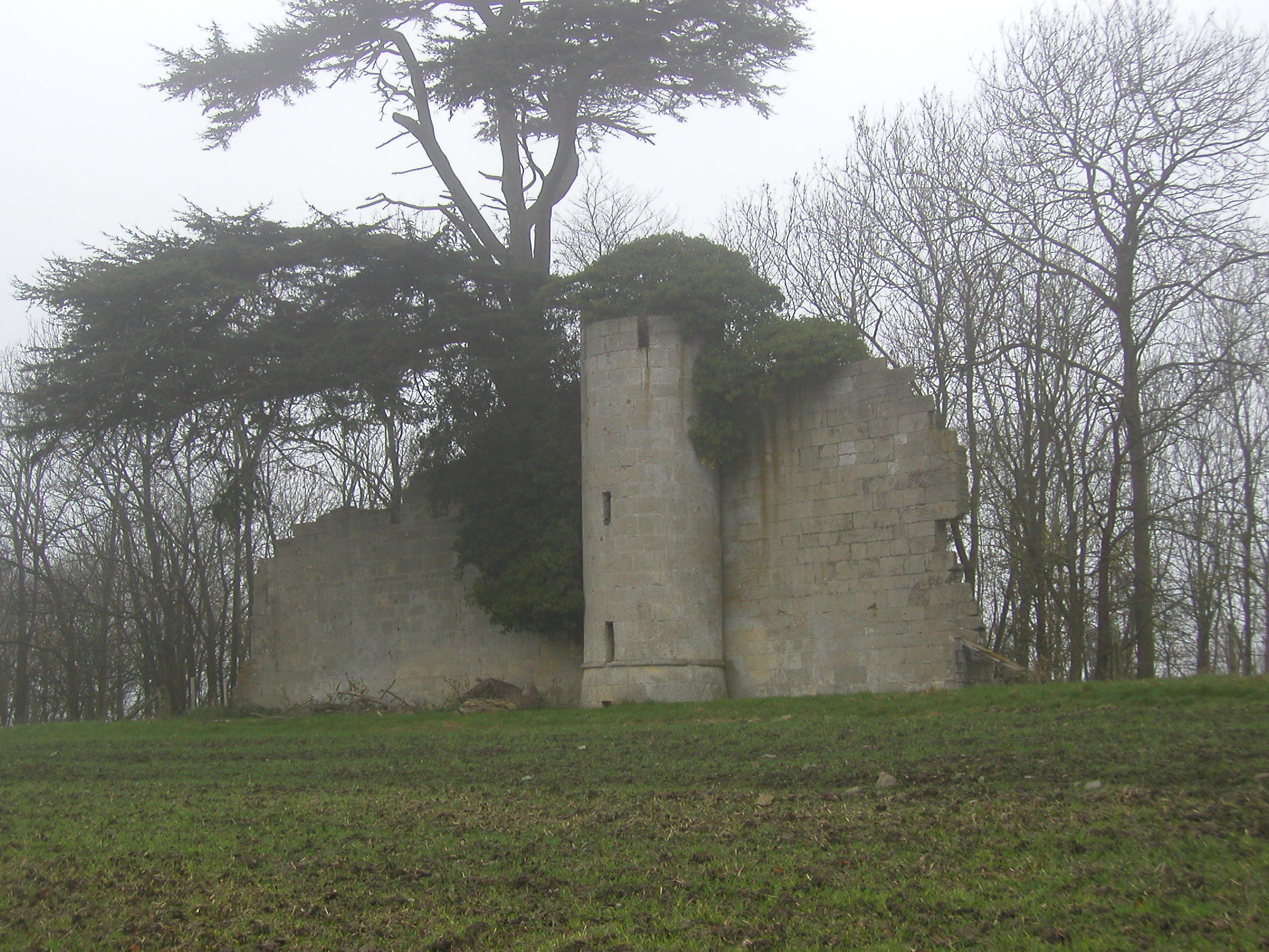 The castle at Pirton post-dates Brown, but the Cedars are said to be his