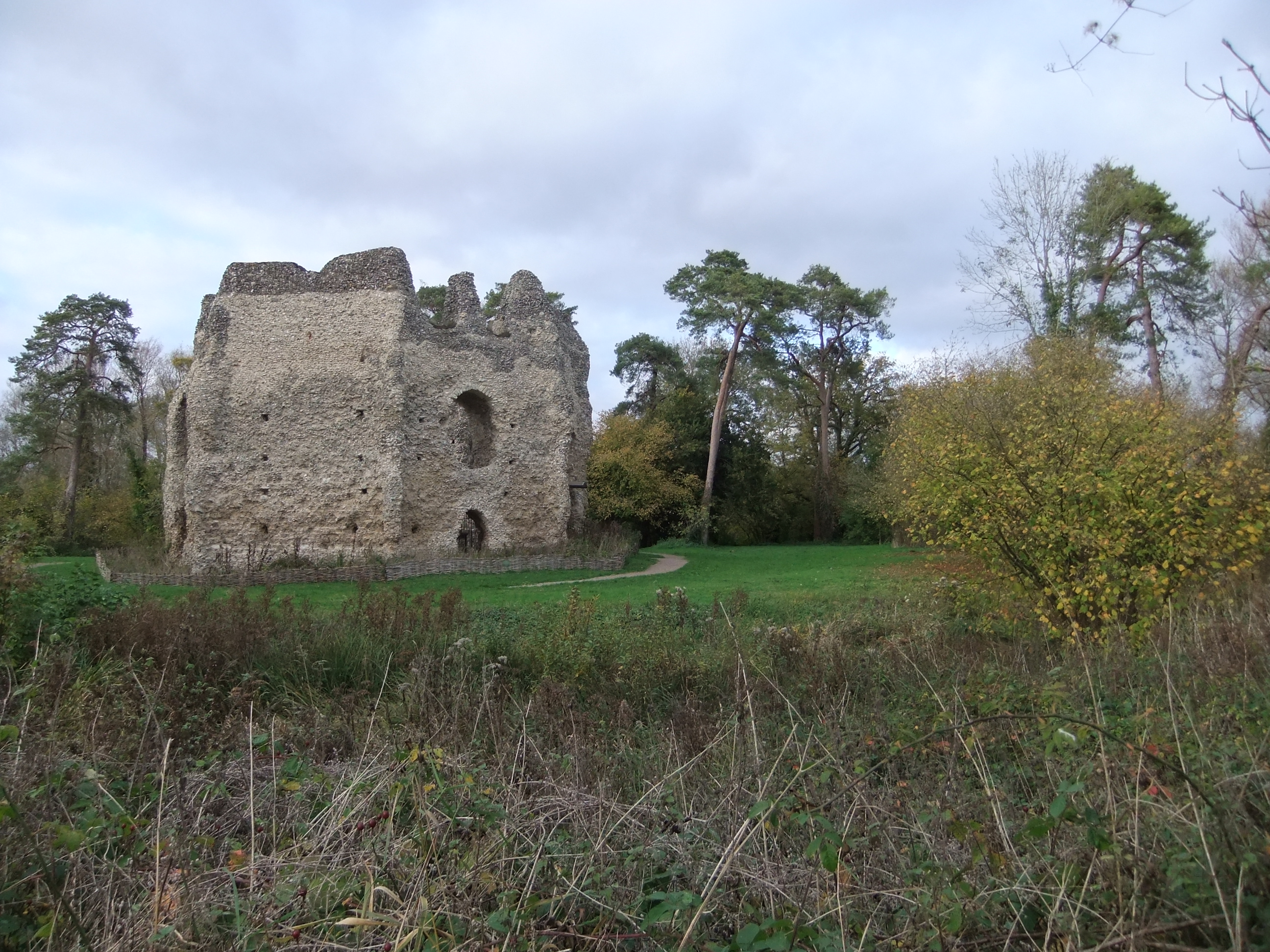 Odiham Castle on the Dogmersfield Riding, the pines may be William Emes' planting