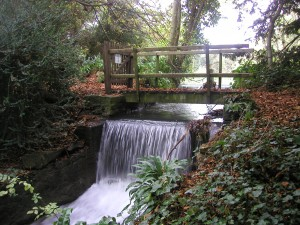 The Kiddington Cascade